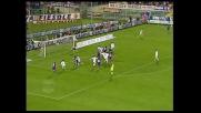 Colpo di testa di Dainelli  e Fiorentina in vantaggio