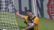 Perla di Toni al Bentegodi per il goal del doppio vantaggio sul Sassuolo