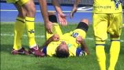 Pellissier pareggia i conti al Bentegodi con un bel goal di testa