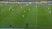 Toni anticipa tutti, la traversa aiuta la Fiorentina