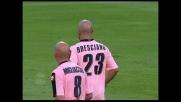 Goal caparbio di Bresciano che riaccende le speranze per il Palermo al Friuli
