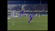 Ariatti raddoppia per la Fiorentina contro l'Udinese