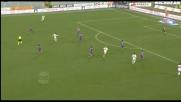 Botta di Meggiorini dalla distanza, il palo salva la Fiorentina