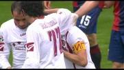 Tavano realizza il goal su una sponda di Danilevicius: pareggio del Livorno