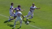 Ljajic conquista un rigore dubbio contro il Milan a Firenze