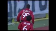 Lucarelli segna su punizione! Il Livorno batte la Sampdoria