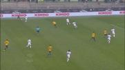 Pazzini con un goal di rapina regala il pareggio all'Hellas Verona