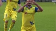 Radovanovic pareggia 1 a 1 ad Udine con un potente tiro da fuori area