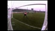 Meravigliosamente Miccoli, il goal del pareggio della Fiorentina a Udine