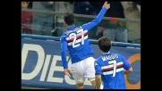 Meraviglioso goal di Quagliarella: 3-1 della Sampdoria sul Livorno